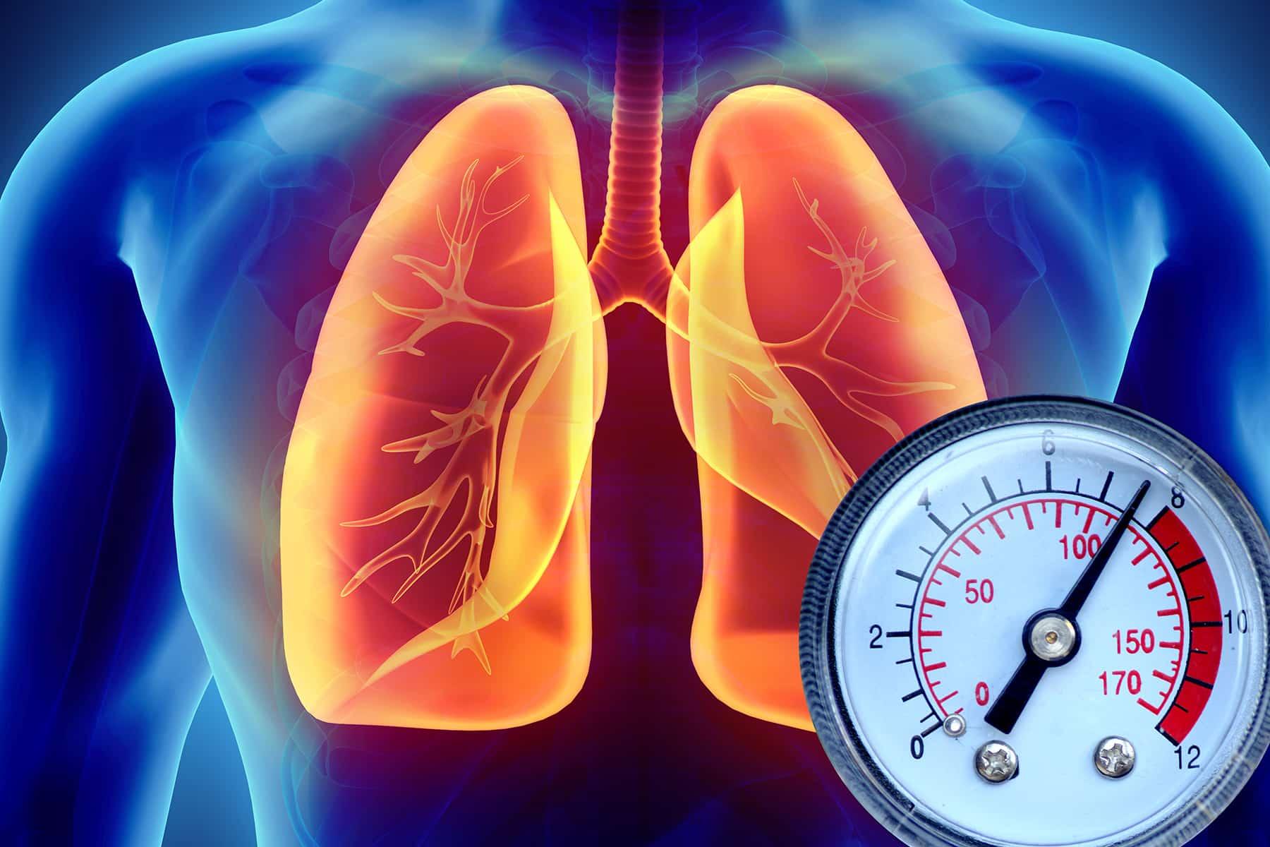 Keajaiban Minyak Kutus-Kutus untuk Mengatasi Masalah Hipertensi